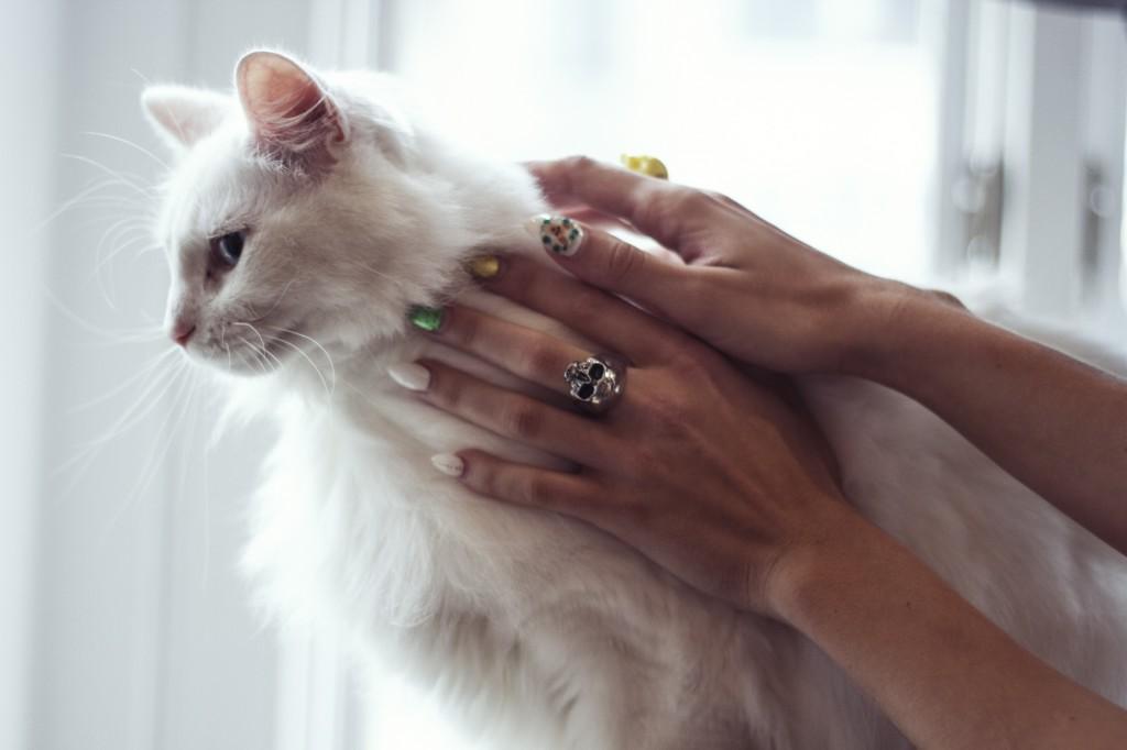 White Cat Girl Ring Model