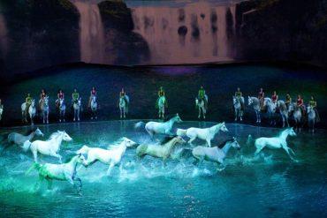 Odysseo Cavallia